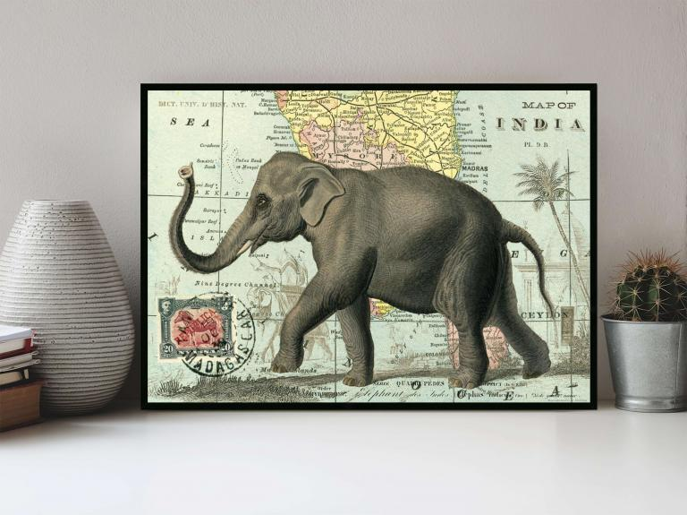 20 - Carte de l'Inde & Éléphant
