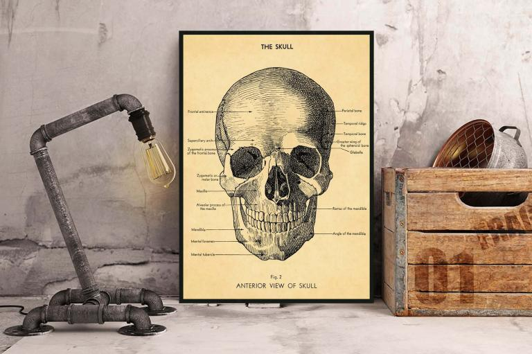 3 - Le Crâne